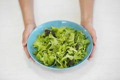 Θηλυκό κύπελλο εκμετάλλευσης με τα μικτά φύλλα σαλάτας στο λευκό Στοκ Εικόνα