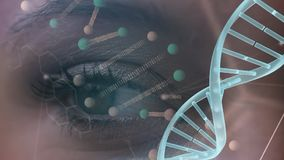 Θηλυκό μάτι με το πρότυπο DNA απόθεμα βίντεο