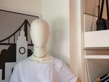 Θηλυκό μανεκέν που στέκεται στο storefront με την μπλούζα και τον κατάλογο στοκ φωτογραφία με δικαίωμα ελεύθερης χρήσης