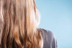 Θηλυκό με την ευθεία καφετιά πίσω άποψη τρίχας σχετικά με το μπλε Στοκ Φωτογραφία