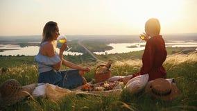 Θηλυκό ομοφυλοφιλικό hava ζευγών ένα πικ-νίκ Πίνουν το κρασί και την ομιλία στο υπόβαθρο της γέφυρας πέρα από τον ποταμό απόθεμα βίντεο