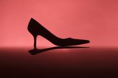 Θηλυκό παπούτσι Στοκ εικόνες με δικαίωμα ελεύθερης χρήσης