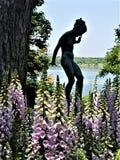 Θηλυκό που πλαισιώνεται από Foxglove στοκ εικόνες