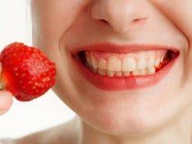 Θηλυκό στόμα με τα μούρα φραουλών δοντιών σε ένα άσπρο υπόβαθρο στοκ εικόνα