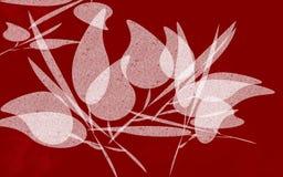 θηλυκό σχεδιάγραμμα Στοκ φωτογραφία με δικαίωμα ελεύθερης χρήσης