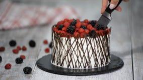 Θηλυκό τέμνον κέικ χεριών με τα μούρα απόθεμα βίντεο