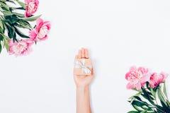 Θηλυκό χέρι που δίνει ένα μικρό δώρο μεταξύ του ανθίσματος peonies στοκ φωτογραφία