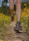 θηλυκό jogging ίχνος ποδιών κινη& Στοκ Εικόνα