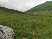Θησαυρός βουνών στοκ φωτογραφία