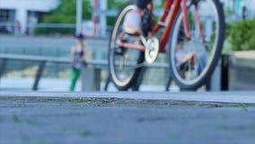 Θηλυκά που οδηγούν τον αστικό τρόπο ζωής ποδηλάτων φιλμ μικρού μήκους