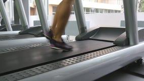 Θηλυκά πόδια που περπατούν treadmill στη γυμναστική Νέα γυναίκα που ασκεί κατά τη διάρκεια του καρδιο workout Πόδια των κοριτσιών απόθεμα βίντεο