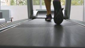 Θηλυκά πόδια που τρέχουν treadmill στη γυμναστική Νέα γυναίκα που ασκεί κατά τη διάρκεια του καρδιο workout Πόδια των κοριτσιών σ απόθεμα βίντεο