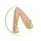 Θηλυκά πόδια winded με τις τυποποιημένες εγκαταστάσεις Οργανικά πόδια συμβόλων καλλυντικών Θηλυκό σημάδι υγείας ποδιών Στοκ φωτογραφίες με δικαίωμα ελεύθερης χρήσης
