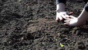 Θηλυκά χέρια που λειτουργούν στο έδαφος απόθεμα βίντεο