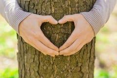 Θηλυκά χέρια που κάνουν μια μορφή καρδιών στοκ φωτογραφία με δικαίωμα ελεύθερης χρήσης