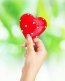 Θηλυκά χέρια που κρατούν την καρδιά Στοκ εικόνα με δικαίωμα ελεύθερης χρήσης