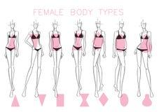 Θηλυκές μορφές σώματος Στοκ φωτογραφία με δικαίωμα ελεύθερης χρήσης
