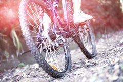Θηλυκή ανακύκλωση ποδηλατών στην επαρχία Στοκ Εικόνα