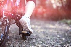 Θηλυκή ανακύκλωση ποδηλατών στην επαρχία Στοκ Φωτογραφία