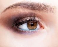 Θηλυκή ζώνη ματιών και brows με την ημέρα makeup Στοκ φωτογραφίες με δικαίωμα ελεύθερης χρήσης
