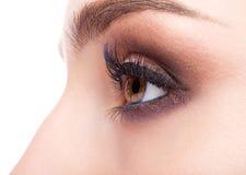 Θηλυκή ζώνη ματιών και brows με την ημέρα makeup Στοκ εικόνα με δικαίωμα ελεύθερης χρήσης
