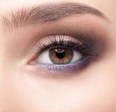 Θηλυκή ζώνη ματιών και brows με την ημέρα makeup Στοκ εικόνες με δικαίωμα ελεύθερης χρήσης