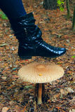 Θηλυκή μπότα κάτω από το μεγάλο μη φαγώσιμο μανιτάρι του toadstool Στοκ φωτογραφίες με δικαίωμα ελεύθερης χρήσης