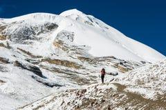 Θηλυκή οδοιπορία σε ένα χιονώδες τοπίο βουνών στοκ φωτογραφία με δικαίωμα ελεύθερης χρήσης