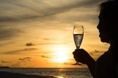 Θηλυκή σκιαγραφία με το κρασί στο ηλιοβασίλεμα Στοκ εικόνες με δικαίωμα ελεύθερης χρήσης