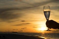 Θηλυκή σκιαγραφία με το κρασί στο ηλιοβασίλεμα Στοκ Εικόνα