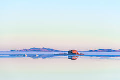 θηλυκή τοποθέτηση στρώματος λιμνών της Βολιβίας de distance 01 06 2000 απομονωμένη από πέρα από salar το αλμυρό λεπτό ύδωρ περπατ Στοκ εικόνα με δικαίωμα ελεύθερης χρήσης