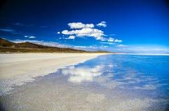 θηλυκή τοποθέτηση στρώματος λιμνών της Βολιβίας de distance 01 06 2000 απομονωμένη από πέρα από salar το αλμυρό λεπτό ύδωρ περπατ Στοκ Εικόνες