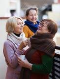 Θηλυκοί φίλοι στο θερινό πεζούλι Στοκ Εικόνες