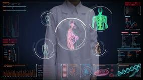Θηλυκός γιατρός σχετικά με την οθόνη, θηλυκό αιμοφόρο αγγείο ανίχνευσης σωμάτων, λεμφατικό, κυκλοφοριακό σύστημα στο ταμπλό ψηφια απεικόνιση αποθεμάτων
