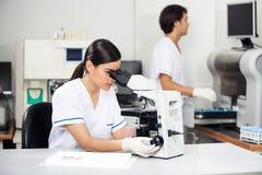 Θηλυκός επιστήμονας που χρησιμοποιεί το μικροσκόπιο στο εργαστήριο Στοκ εικόνα με δικαίωμα ελεύθερης χρήσης