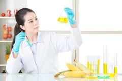 Θηλυκός επιστήμονας που ψάχνει τη νέα γενετική τροποποίηση Στοκ φωτογραφία με δικαίωμα ελεύθερης χρήσης