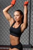 Θηλυκός μαχητής σε ένα κλουβί στοκ εικόνα