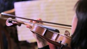 Θηλυκός μουσικός βιολιστών που παίζει το κλασσικό βιολί απόθεμα βίντεο