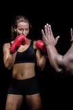 Θηλυκός μπόξερ με τη θέση πάλης ενάντια στο χέρι εκπαιδευτών Στοκ φωτογραφία με δικαίωμα ελεύθερης χρήσης