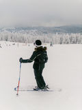 Θηλυκός σκιέρ που στέκεται στη βουνοπλαγιά στοκ εικόνα