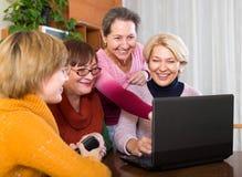 Θηλυκός συνταξιούχος που μελετά το lap-top Στοκ Εικόνα