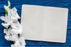 Θηλυκός χώρος εργασίας γραφείων Σημειωματάριο και gladiolus στο μπλε ξύλινο πρότυπο άποψης υποβάθρου τοπ στοκ φωτογραφία