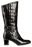 Θηλυκό λαμπρό μαύρο δίπλωμα ευρεσιτεχνίας-δερμάτινο παπούτσι με το υψηλό χ Στοκ εικόνες με δικαίωμα ελεύθερης χρήσης