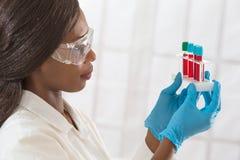 Θηλυκό δείγμα αίματος μελέτης εργαστηρίων βοηθητικό για την ανάλυση Στοκ φωτογραφίες με δικαίωμα ελεύθερης χρήσης
