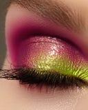 Θηλυκό μάτι κινηματογραφήσεων σε πρώτο πλάνο με την όμορφη φωτεινή σύνθεση μόδας Η όμορφη λαμπρή πορφυρή, πράσινη σκιά ματιών, υγ στοκ εικόνα
