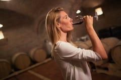 Θηλυκό δοκιμάζοντας κρασί στην οινοποιία Στοκ Φωτογραφίες