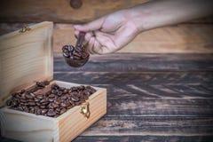 Θηλυκό χέρι που εκσκάπτει το φασόλι καφέ από το ξύλινο κιβώτιο Στοκ Φωτογραφίες