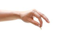 Θηλυκό χέρι που κρατά ένα χρυσό νόμισμα Στοκ Εικόνες