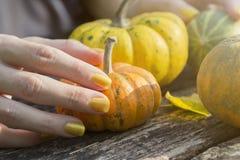 Θηλυκό χέρι που κρατά μια πορτοκαλιά κολοκύθα στον πίνακα στο πάρκο Στοκ Φωτογραφίες