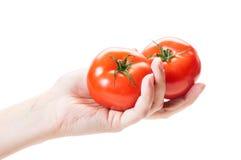 Θηλυκό χέρι που κρατά δύο ντομάτες στο άσπρο υπόβαθρο Στοκ Φωτογραφία